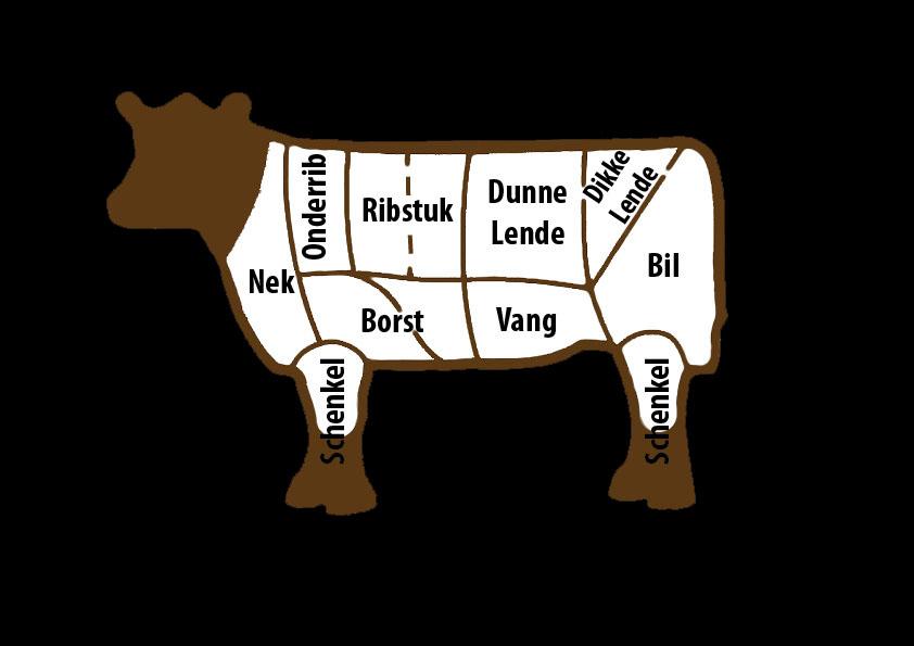 Rundvlees onderdelen aan koe limousin vlees